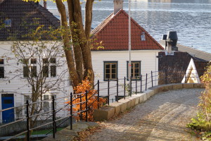 Wooden houses with a view. © visitBergen.com. Photo: Gjertrud Coutinho